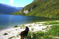 Bild 14: Ferienhaus Giorgia in Vesta am Lago di Idro mit eingezäunten Garten